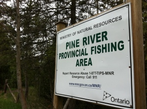 Day 6 of 365 - Pine River Provincial Fishing Area In Mulmur