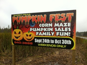 Day 136 of 365 - Sweet Peas Pumpkein Fest & Haunted Corn Maze